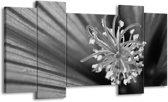 Schilderij | Canvas Schilderij Bloem | Zwart, Grijs, Wit | 120x65cm 5Luik | Foto print op Canvas