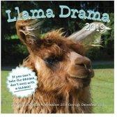 Llama drama 2019 : 16-month calendar