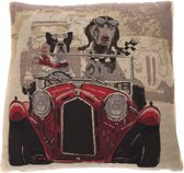 IN THE MOOD KUSSEN - NAPOLEON 45X45 HOND IN AUTO ROOD