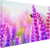 Bloemen met bij Canvas 60x40 cm - Foto print op Canvas schilderij (Wanddecoratie woonkamer / slaapkamer) / Bloemen Canvas Schilderijen