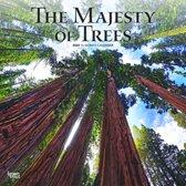 Majesty of Trees Kalender 2020