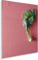Enkele bol van koolrabi op een roze achtergrond Plexiglas 120x180 cm - Foto print op Glas (Plexiglas wanddecoratie) XXL / Groot formaat!