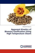 Apparent Kinetics of Biomass Gasification Using High-Temperature Steam
