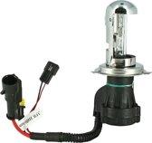 Evo Formance Bi-xenonlamp H4 12 Volt 35 Watt 4300k Wit Per Stuk