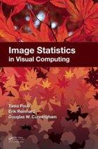 Image Statistics in Visual Computing