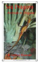Sea Dragons: Animals in Disguise