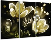Glasschilderij Bloem | Geel, Groen | 120x80cm 3Luik | Foto print op Glas |  F005039