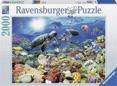 Ravensburger Leven in het koraalrif (2000 stukjes)