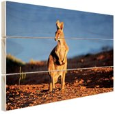 Kangoeroe zonsondergang Hout 160x120 cm - Foto print op Hout (Wanddecoratie) XXL / Groot formaat!
