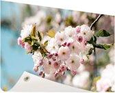 Bloesem in de lente Tuinposter 60x40 cm - klein - Tuindoek / Buitencanvas / Schilderijen voor buiten (tuin decoratie)