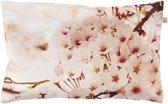 Dutch Decor Kussenhoes Biente 30x50 cm roze