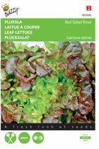 Pluksla Rode Eikenblad - Lactuca sativa - set van 7 stuks