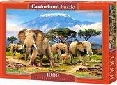 Kilimanjaro Morning - 1000 stukjes