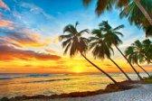 Papermoon Barbados Palm Beach Vlies Fotobehang 200x149cm 4-Banen