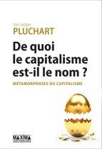 De quoi le capitalisme est-il le nom ?