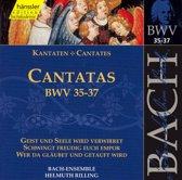 Cantatas BWV 35,36,37