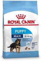 Royal Canin Maxi Junior - Hondenvoer - 10 kg