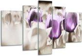 Glasschilderij Tulpen   Paars, Grijs, Wit   170x100cm 5Luik   Foto print op Glas    F002771
