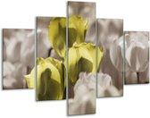 Glasschilderij Tulpen | Bruin, Groen, Zwart | 100x70cm 5Luik | Foto print op Glas |  F002765