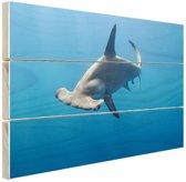 FotoCadeau.nl - Hamerhaai Hout 80x60 cm - Foto print op Hout (Wanddecoratie)
