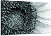 Schilderij | Canvas Schilderij Bloem | Grijs, Groen | 140x90cm 1Luik | Foto print op Canvas