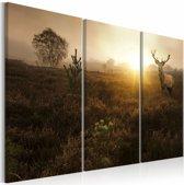 Schilderij - Hert in de Ochtend  , bruin , 3 luik