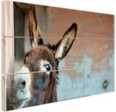 Ezel Hout 160x120 cm - Foto print op Hout (Wanddecoratie) XXL / Groot formaat!