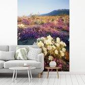 Fotobehang vinyl - Verdeelde teunisbloemen op de grond breedte 295 cm x hoogte 400 cm - Foto print op behang (in 7 formaten beschikbaar)