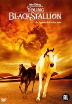 YOUNG BLACK STALLION, THE