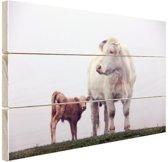 Koe met kalf in de mist Hout 60x40 cm - Foto print op Hout (Wanddecoratie)