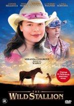 The Wild Stallion (dvd)