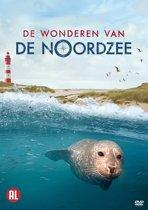 De Wonderen Van De Noordzee