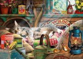 Gibsons puzzel Snoozing in the Shed - Steve Read - 1000 stukjes