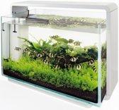 glazen dekruit home aquarium 80