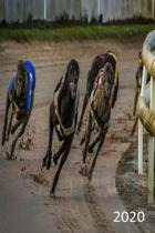 2020: Diary, Weekly Planner, Organiser, Year 2020 - Week Per View. Gift for Greyhound Racing Fan