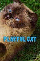 Playful Cat (Journal / Notebook)