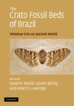 The Crato Fossil Beds of Brazil