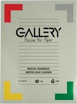 Gallery Bristol tekenblok formaat 27 x 36 cm 200 g/m² blok van 20 vel
