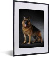 Foto in lijst - Portret van een Duitse Herder met zwarte achtergrond fotolijst zwart met witte passe-partout klein 30x40 cm - Poster in lijst (Wanddecoratie woonkamer / slaapkamer)