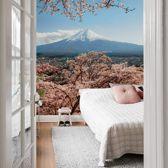 Fotobehang Colombo - Mount Fuji in Japan 192x300 cm - makkelijk aan te brengen vliesbehang - mooi natuur behang