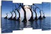Canvas schilderij Bomen | Blauw, Wit, Grijs | 150x80cm 5Luik