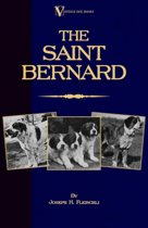 The Saint Bernard - A Presentation of the Origin, History and Development of This Noble Breed, Along With a Discussion of Its Care, Showing, Physical Perfection, Kenneling, Training, Uses and Dispositions (A Vintage Dog Books Breed Classic)