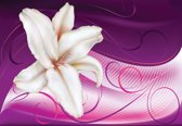Fotobehang Lily Abstract | M - 104cm x 70.5cm | 130g/m2 Vlies