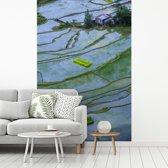Fotobehang vinyl - Rijstterrassen van Banaue in de Aziatische Filippijnen breedte 335 cm x hoogte 500 cm - Foto print op behang (in 7 formaten beschikbaar)