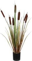 Mica Decorations lisdodde in plastic pot bruin maat in cm: 90 x 12,5