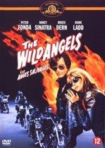 Dvd Wild Angels, The - Bud21