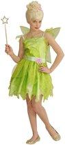 Elfen Feeen & Fantasy Kostuum | Fee Qula | Meisje | Maat 140 | Carnaval kostuum | Verkleedkleding