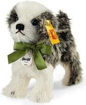 Steiff Molly hond EAN 031434 , 14 cm.