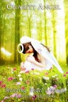 Mending Angel's Wings