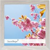 SecaDesign Anima Fotolijst Hout - Fotomaat 40x40 cm - Lichtgrijs